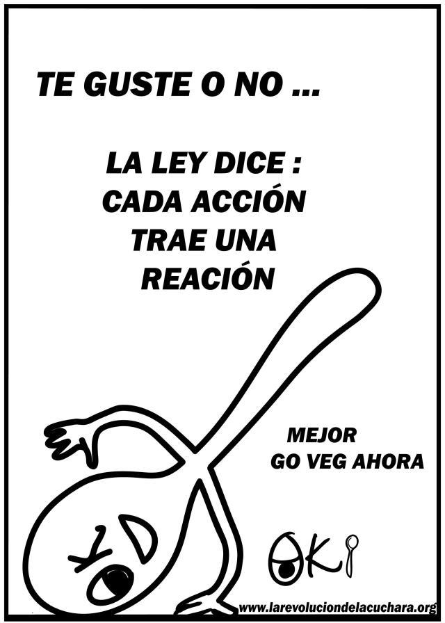 60- ACCION Y REACCION