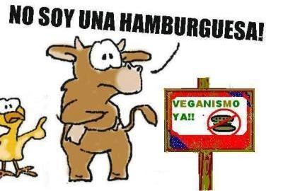 90- NO ES HAMBURGUESA...